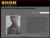 web design SHOK - Expression Engine
